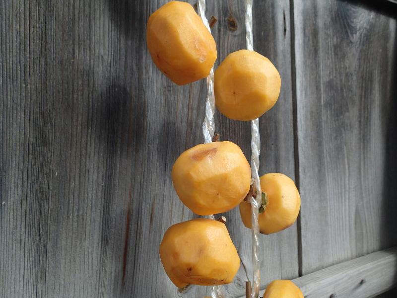 柿 の 渋 抜き 固形 アルコール
