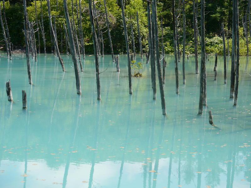白金青い池-1