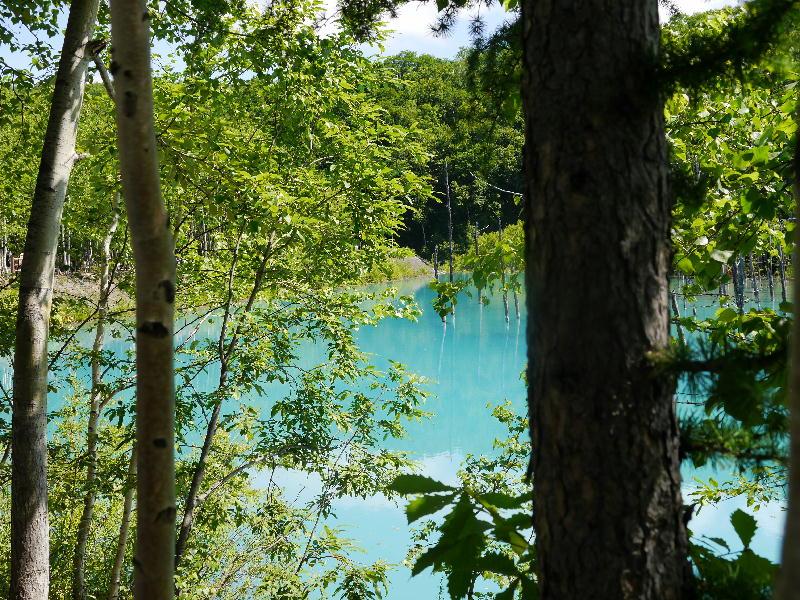 白金青い池-2